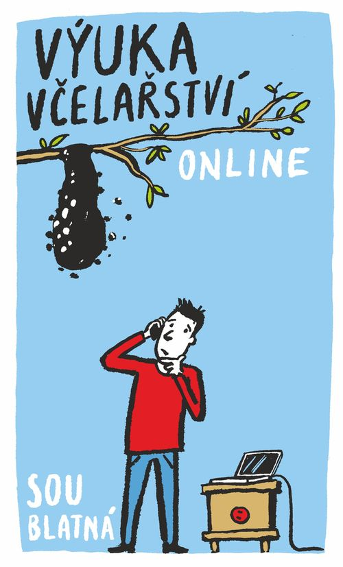 Výuka online
